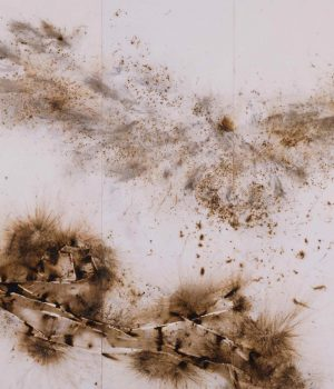Cai Guo-Qiang, Eagle Landing on Pine Branch, 2007, gunpowder on paper mounted on 5 panel screen, image courtesy of the artist.